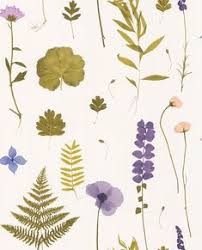 Brewster 56.4 sq. ft. Dixon <b>Green Forest Leaves Wallpaper</b> in 2019 ...