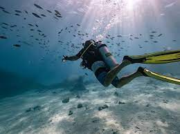 Tahiti celebra la giornata mondiale degli oceani - TgTourism