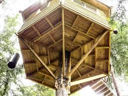 free standing tree house modern tree house plans on stilts simple free standing bird for swallows building freestanding treehouse designs free standing