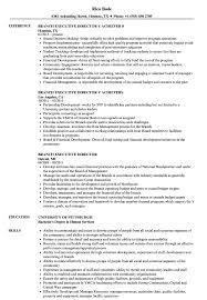Lovely Resume Examples Executive Director Images Entry Level