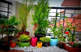 Small Picture Apartment Balcony Garden Design Ideas racetotopCom