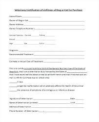 rabies vaccination certificate rabies vaccine certificate template pet health certificate template