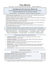 Sales Director Resume Sample It Director Resume Sample - Resume