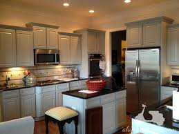 Paint For Kitchens Kitchen White Painted Kitchen Cabinets With Furniture Endearing