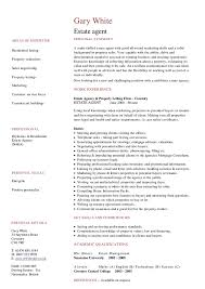photo essays archives part time traveler cv example travel cv example travel consultant