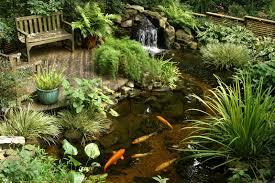 Small Ponds In Backyard