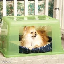 rainy day doghouse