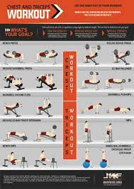 chest and tricep workout for size