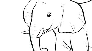 Baby Elephant Coloring Pages Elephant Coloring Pages Baby Elephant