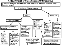A Flow Chart For Classification Of Nystagmus Pdf Free Download