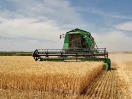essay on the development of n agriculture words  agriculture
