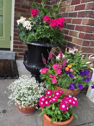 Fall Color Container Planting Idea Best Plants Ideas On Pinterest Container Garden Ideas For Front Porch