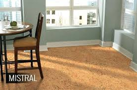 whats the best flooring for dogs dog friendly pet vinyl floor cleaner