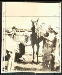 TRIPLE CROWN 1935: THE COLT, THE KID \u2026\u2026 AND THE MURDER OF EVELYN ...