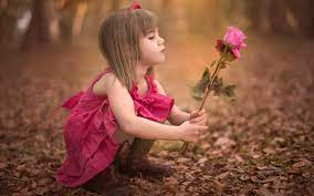 Cute little girl holding rose flower ...