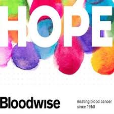 Image result for bloodwise logo