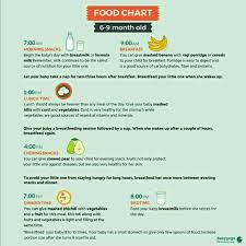 Baby Food Chart 9 Months Old 9 Month Old Baby Food Chart