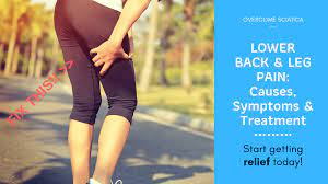 2019 guide to lower back and leg pain