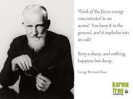 George Bernard Shaw Quotes Extraordinary George Bernard Shaw KarmaFree Cooking