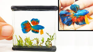 Betta Art Decorative Fish Bowl DIY BETTA FISH TANK Inks Resin Polymer Clay Tutorial How to 36