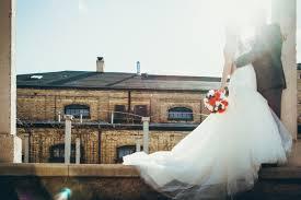 Rose Images [HD]: Download Beautiful ...