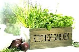 window sill herb garden kits indoor window box for herbs sill herb garden kits kitchen kit