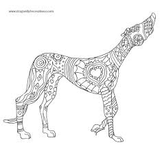 Small Picture Whippet Animal Coloring Pages Greyhound Dog Line Art nebulosabarcom