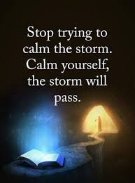 Inspirational Life Quotes Words Of Wisdom Calm Yourself The Storm Custom Calm Quotes