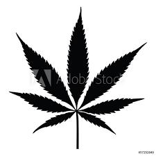 Fotografie Obraz Vector Cannabis Leaf Silhouette Marijuana