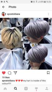 Short Grey Hair Gray Hair Pixie