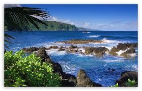 جزيرة ماوي Images?q=tbn:ANd9GcSdAeVqIVhUPbv-pSZzSQg1DA4p3GGvw5Y_UXurfEgdwu0MfYgxYg