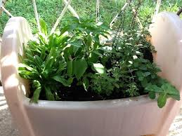 Small Picture Container Herb Garden Planter Designs Ideas