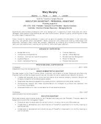 Ceo Resume Samples Custom Sample Ceo Resume Netdoma