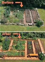 garden layout vegetable garden design