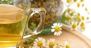 Výsledek obrázku pro bylinkový čaj