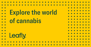 Sativa Indica Strain Chart Sativa Cannabis Strains Leafly