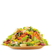 garden salad with chicken. Simple With Chicken Garden Salad And With