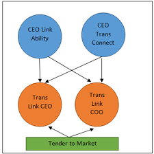Translink Org Chart How Trust Is Both The Driver And Inhibitor In Not For Profit