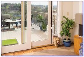 cat door for sliding glass door canada
