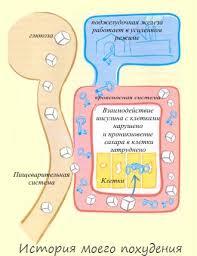 Глубина монтажа лечение сахарного диабета 2 го типа