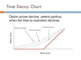 Understanding Options Ppt Download