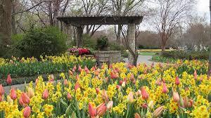 color garden. Jonsson Color Garden R