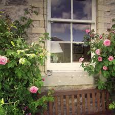 Kitchen Garden Window Practical Of Kitchen Garden Window Inspiration Home Designs