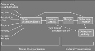 theoretical development of criminal deviance timeline timetoast social disorganization theory