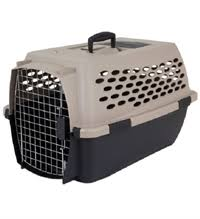 Midwest Dog Crate Size Chart Travel Kennels Iata Kennels For Dogs Dubai Pet Food