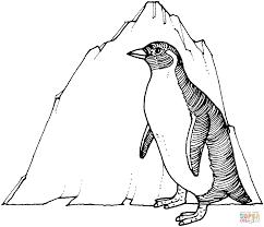 Pinguin Kleurplaten Gratis Printbare Kleurplaten
