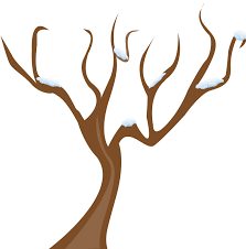 Winter Tree Template Barren Clipart Tree Template Free Clipart On Dumielauxepices Net