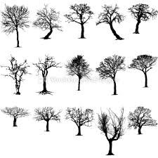 Tree Vector Brush Pack Vector Photoshop Brushes Stock