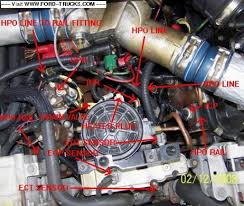1996 f250 7 3 wiring diagram on 1996 images free download wiring 7 3 Powerstroke Wiring Diagram ford diesel glow plug relay location 7 3 1997 f250 wiring diagram 96 powerstroke wiring diagram 7.3 Powerstroke Fuel System
