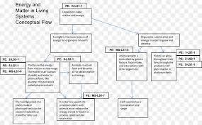Conceptual Flow Chart Chemistry Cartoon